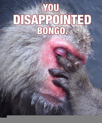 disappointed-bongo.jpg