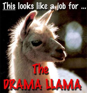 Drama_Llama.jpg